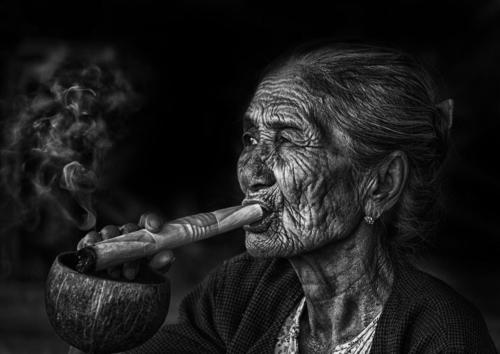 Prämieret SWB 1538 23Pt Steaming Granma Kleeb Kurt